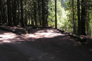 Photo: 016, ROUND LAKE CAMPGROUND
