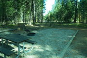 Photo: 243, RV GROUP CAMP ELDERBERRY