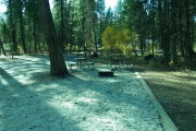 Photo: 244, RV GROUP CAMP ELDERBERRY