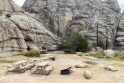 Photo: Bread Loaves Group Camp, AREA 5 & 6
